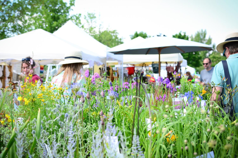 Besucher Ladenburger Gartenlust 2019